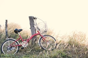 Hipster bicycle on grass field