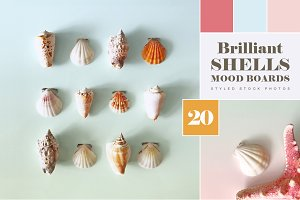 Brilliant Shells moodboards & photos