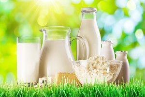 Organic milk product.