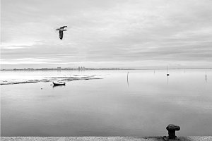 Sky, sea and land