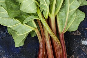 Rhubarb on a dark background