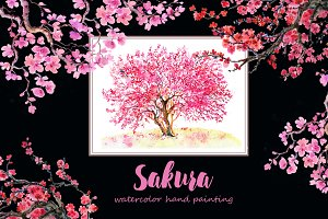 Sakura flowers, clipart,watercolor