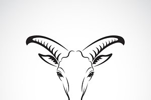 Vector of goats mountain head.