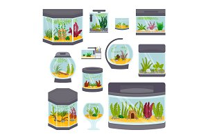 Transparent aquarium interior vector illustration isolated on white habitat house underwater fish tank bowl.