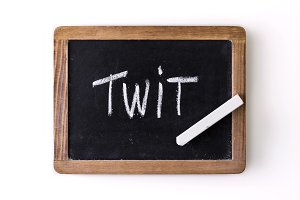 "Word ""Twit"" written on a slate"