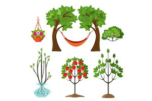 Set of summer plants in gardening concept. Apple tree