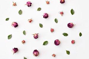 Flat lay roses