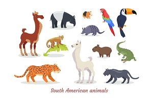 South American Animals Cartoon Vectors Set