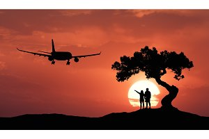 People under the crooked tree and airplane