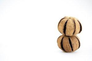 Set of dry brazil nuts, Bertholletia