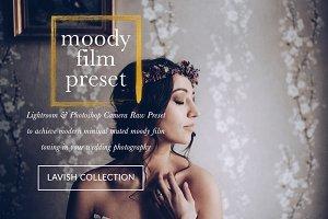Moody Cool Film Wedding Presets