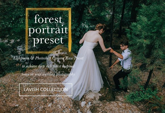 Forest Portraiture Wedding Presets