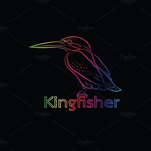 Vector of a kingfisher. Bird.