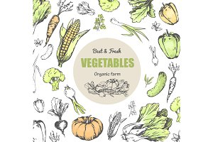 Best and Fresh Vegetables from Organic Farm Poster