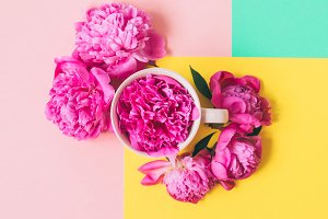 cup and peonies flowers