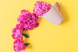 cup with pink flowers