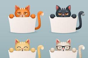 Beggar cats