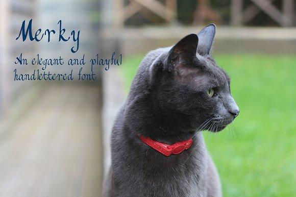 Merky An Elegant And Playful Font
