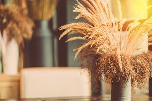 Dead flower grass decor on table