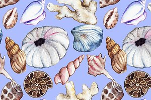 Sea shell marine seamless pattern