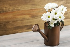 Flowers in a watering can on wooden table. Daisy flower. Horizontal shoot.