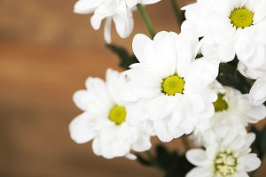 Close-up of flowers on wooden background. Daisy flower. Decor.
