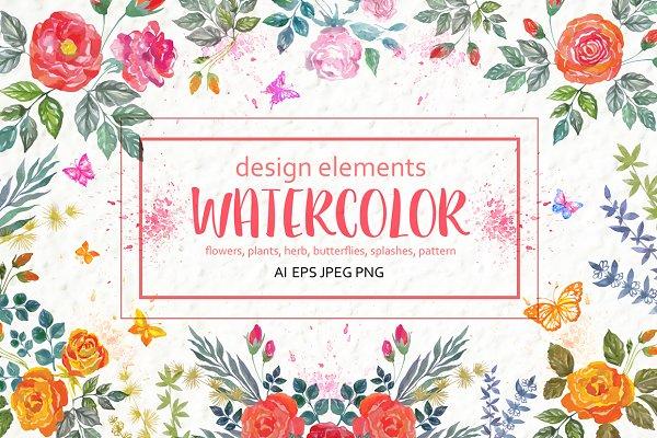 Watercolor floral design elements.