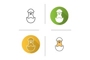 Newborn chicken icon