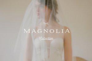 Magnolia ProPhoto 6 Collection