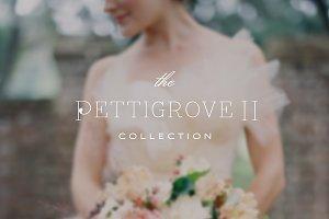 Pettigrove II ProPhoto 6 Collection