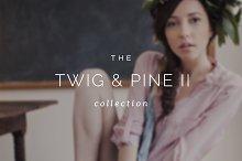 Twig & Pine II ProPhoto 6 Collection