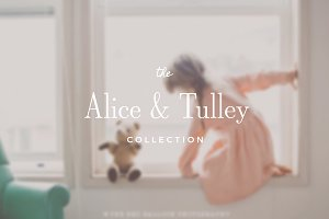 Alice & Tulley ProPhoto 6 Collection
