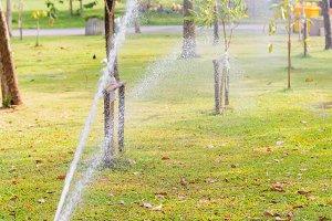 Water Sprinkler in public park