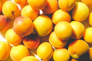 Apricots, faded vintage look