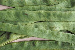 mangetout pea legumes vegetables