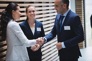 Businesspeople having a discussion and shaking hands
