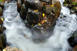 Water and stone.
