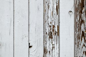 Gray wooden wall. Macro shot.