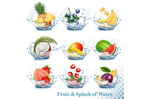 Fruit in a water splash. Vector