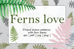 Ferns Love Collection