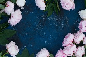 Frame of peonies on blue