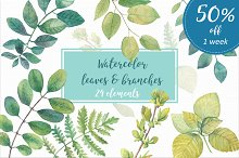 50% OFF Watercolor leaves & branches