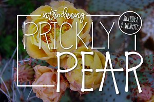 Prickly Pear a Handwritten Typeface