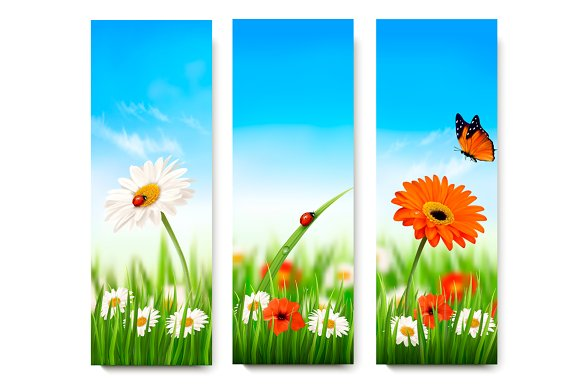 Nature Summer Banners Vector