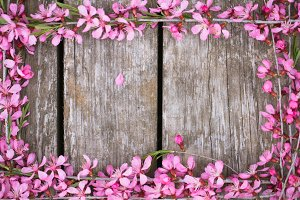 Beautiful spring flowers on old wooden background