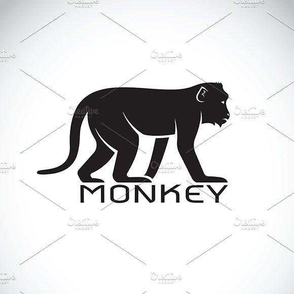 Vector Of A Monkey