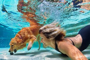 Girl with dog dive underwater