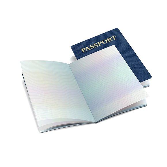 Open International Passport Template