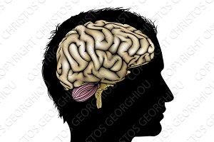 Man brain concept
