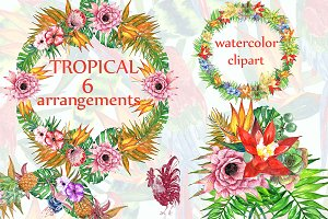 Tropic watercolor clip art